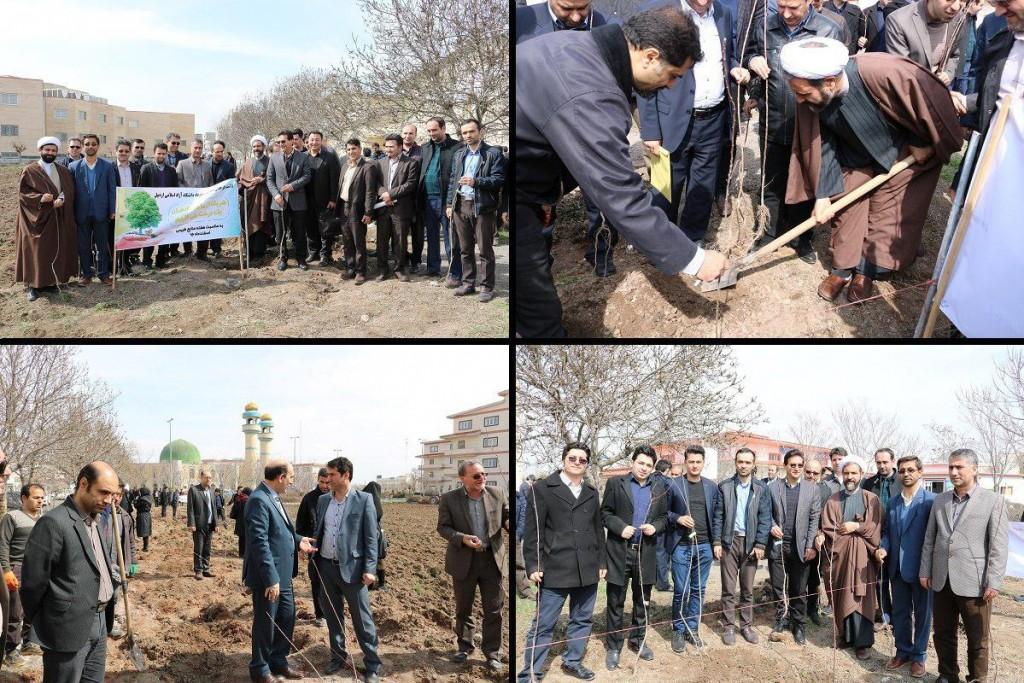 کاشت درخت در دانشگاه آزاد اردبیل
